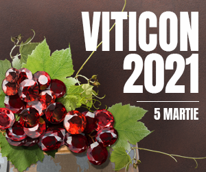 Viticon 300x250